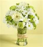 patflowers